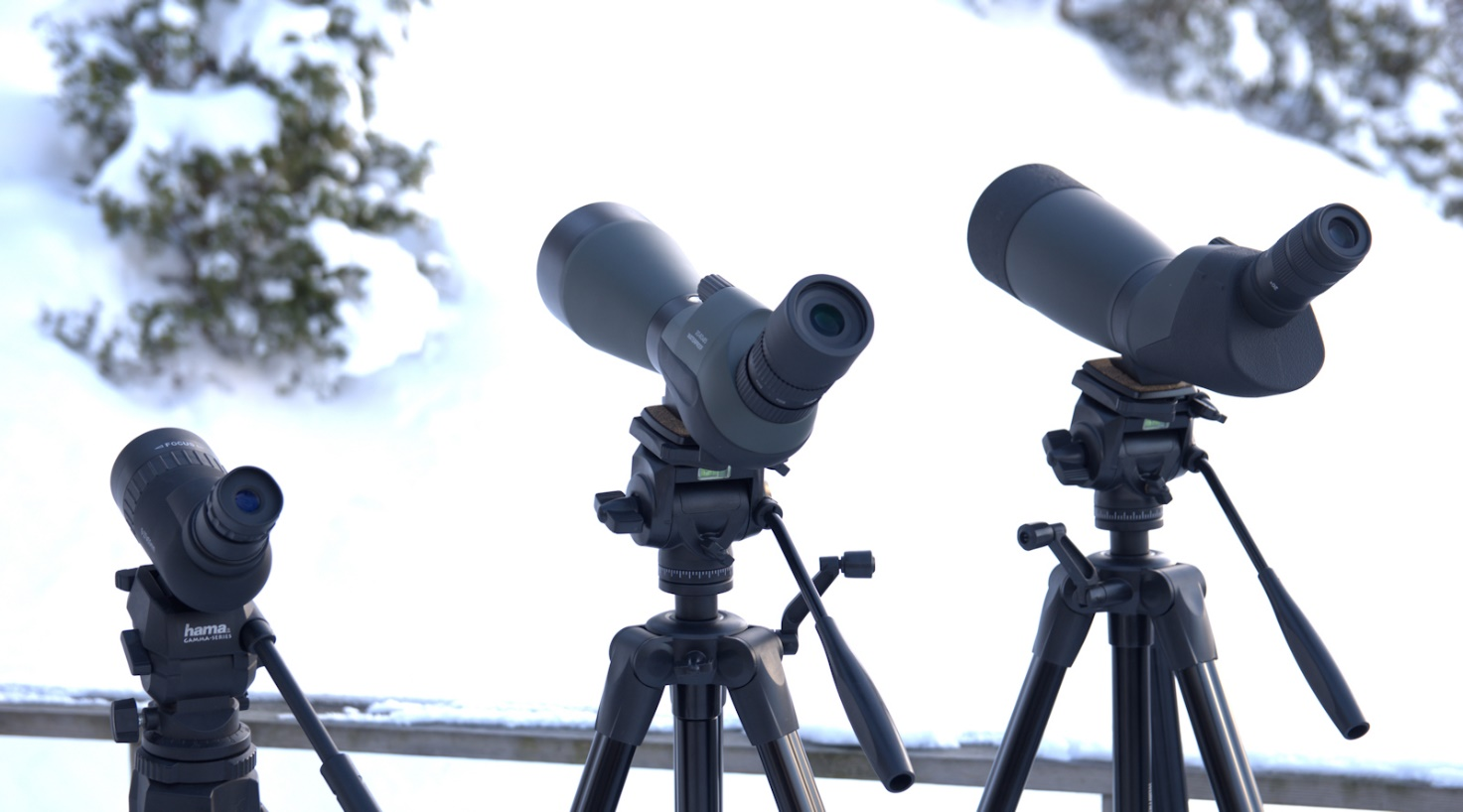 Spotting scopes sammen